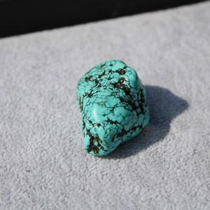 Turquoise h23 2 thumb